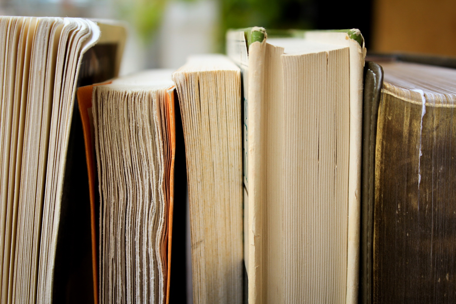 Способны ли книги и фильмы нас изменить?