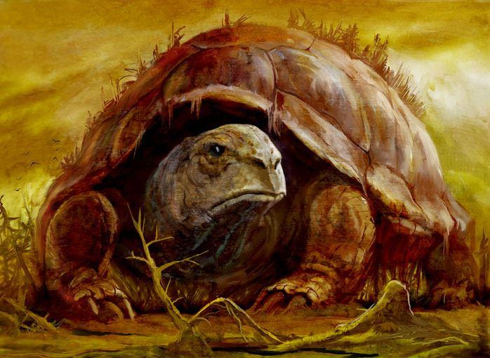 Черепаха психоанализа